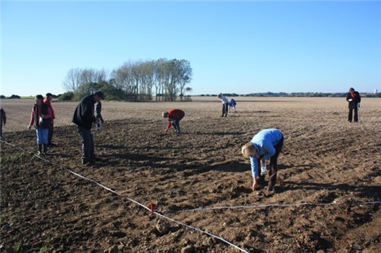 Photo of volunteers field walking