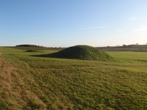 Two Late Neolithic or Bronze Age burial mounds at Harpley Common. Formerly managed under a project Section 17 agreement, they are now included in a Higher Level Stewardship agreement.